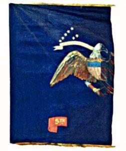 Regimental Flag - 5th Regiment of Infantry, US Volunteers (CN 31)