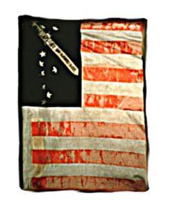 US Flag - 1st Regiment, NJ Volunteers (CN 4)