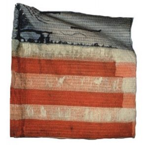 US Flag - 2nd Regiment, NJ Volunteers (CN 12)